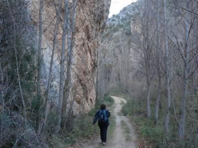 Parque Natural del Barranco Río Dulce;senderismo en almeria senderismo en burgos